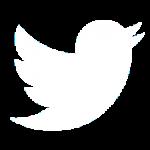 twitter social media